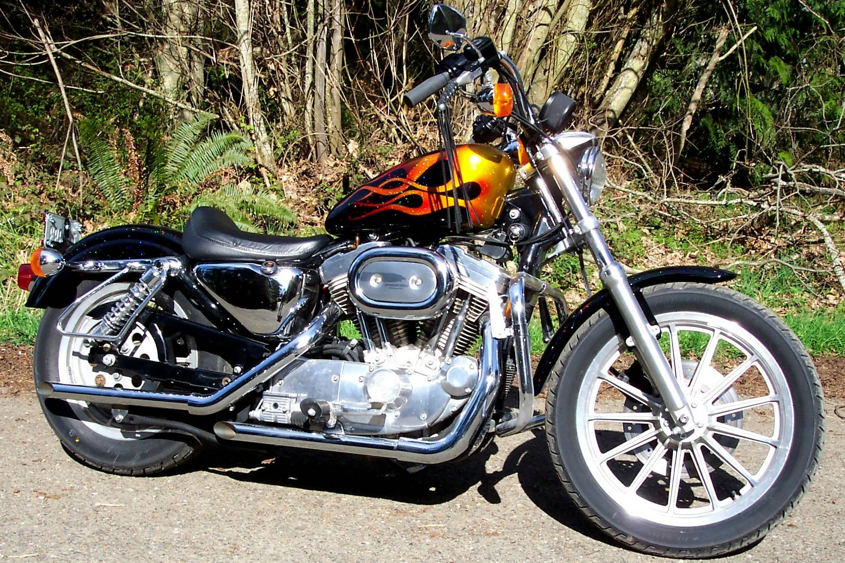 Harley Davidson 2 14 2008 / HD Sportster 1997 Black and Candy Flames